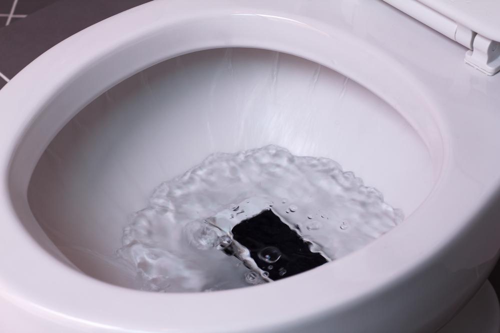 celular molhado dentro de vaso sanitário