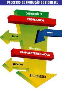 Processo de fabricação do biodiesel. (Créditos: www.biodieselbr.com).