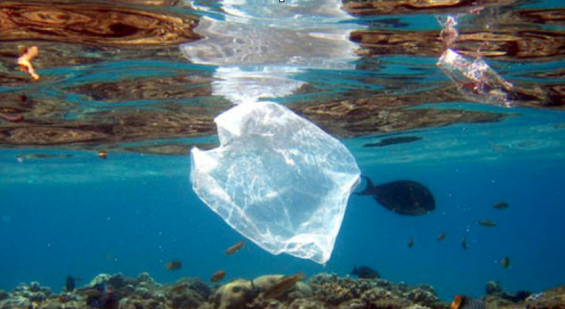 Imagem de saco plástico no oceano. Plástico Reciclado