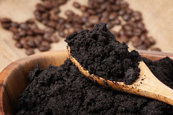 Brasileira descobre como fazer biodiesel a partir da borra de café