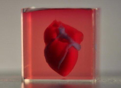 impressão 3d coração