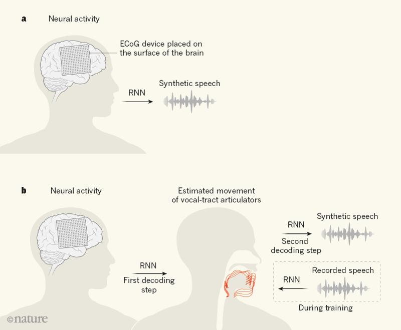 sinais cerebrais