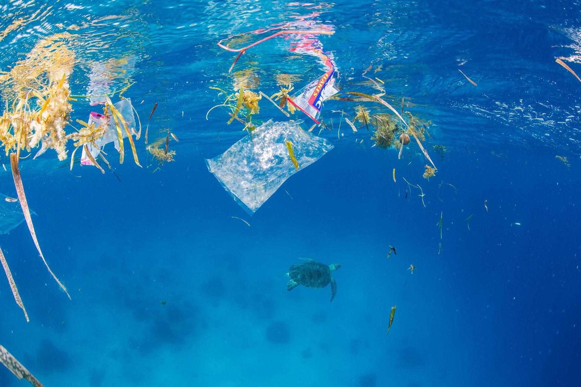 robô para limpeza oceânica