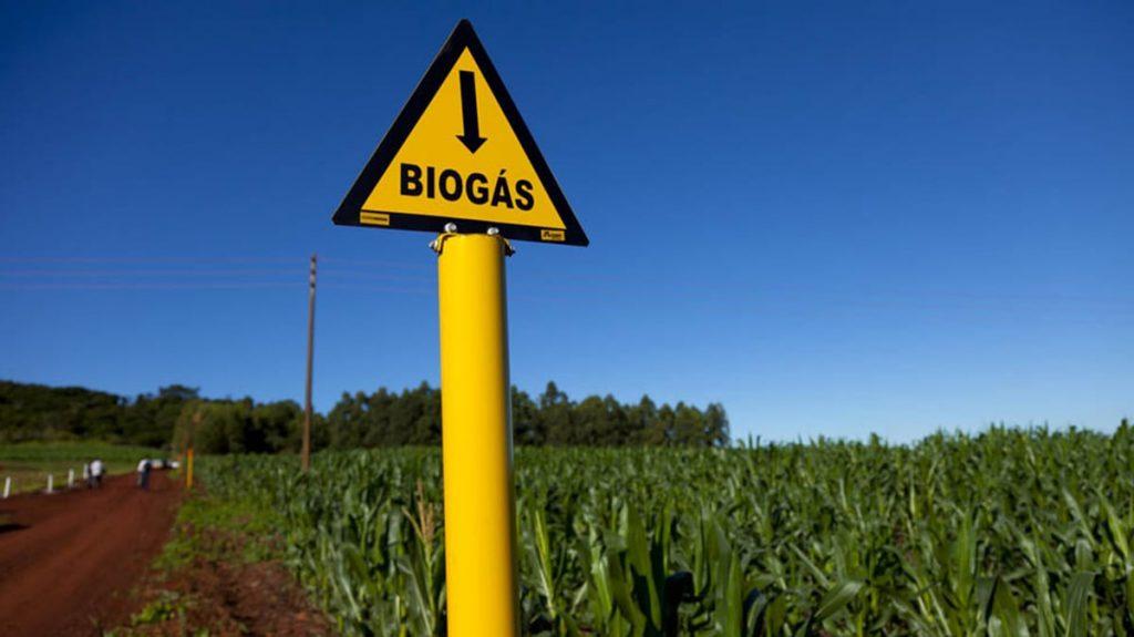 biogás pode gerar energia