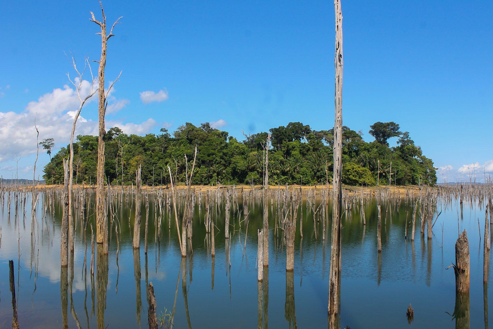 hidrelétricas amazônia pegada de carbono IA