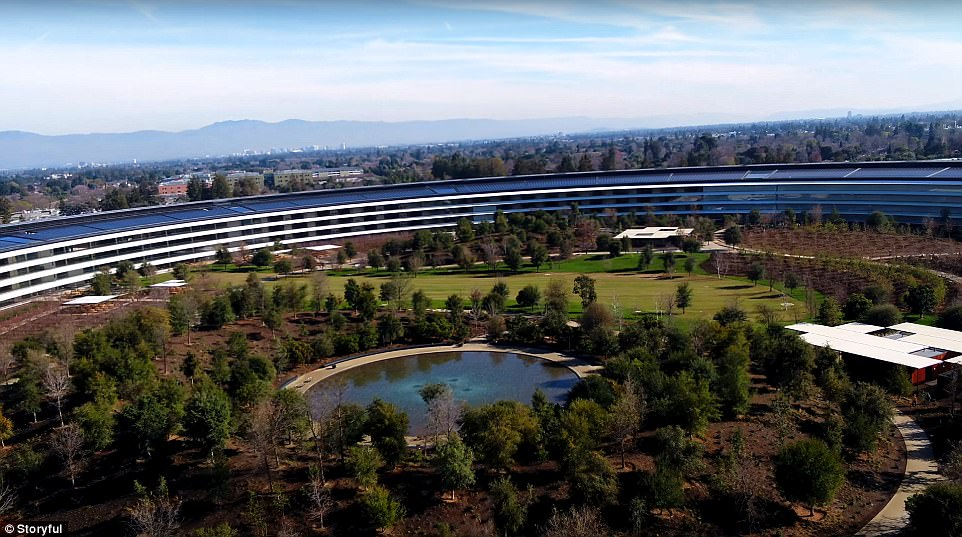 apple park trees