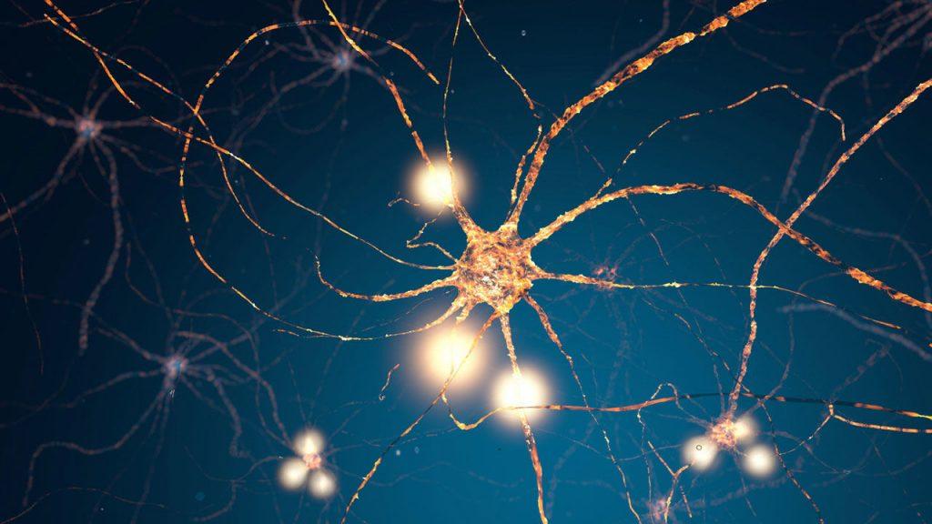 neurônio em um chip
