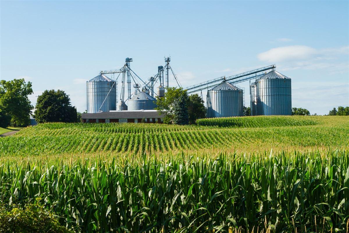 engenharia agroindustrial