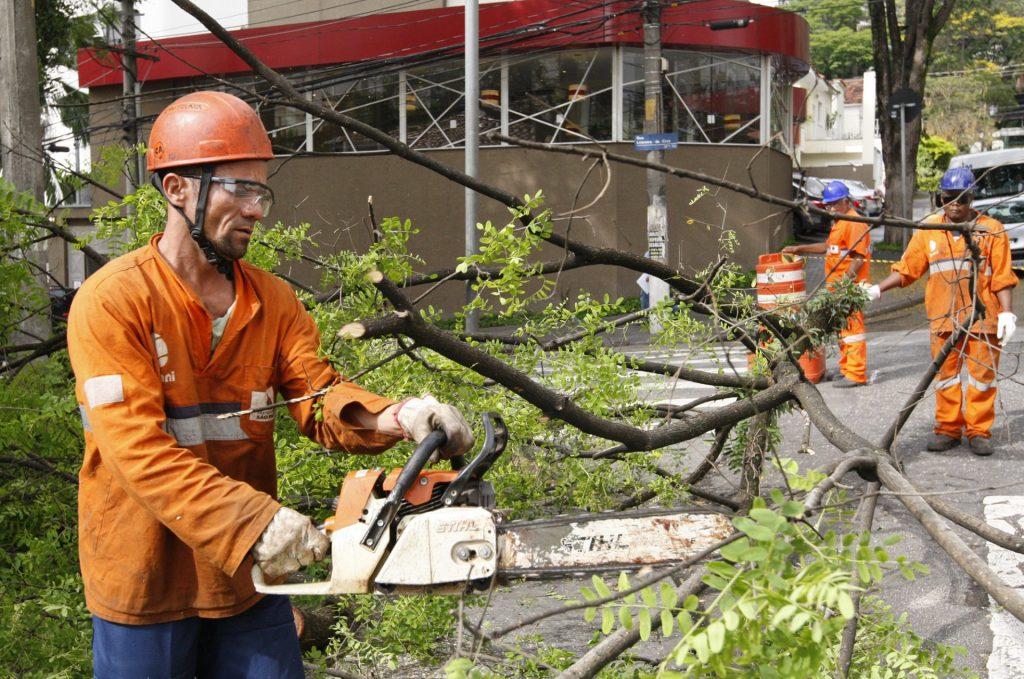 homem com serra e uniforme realizando a poda de árvores