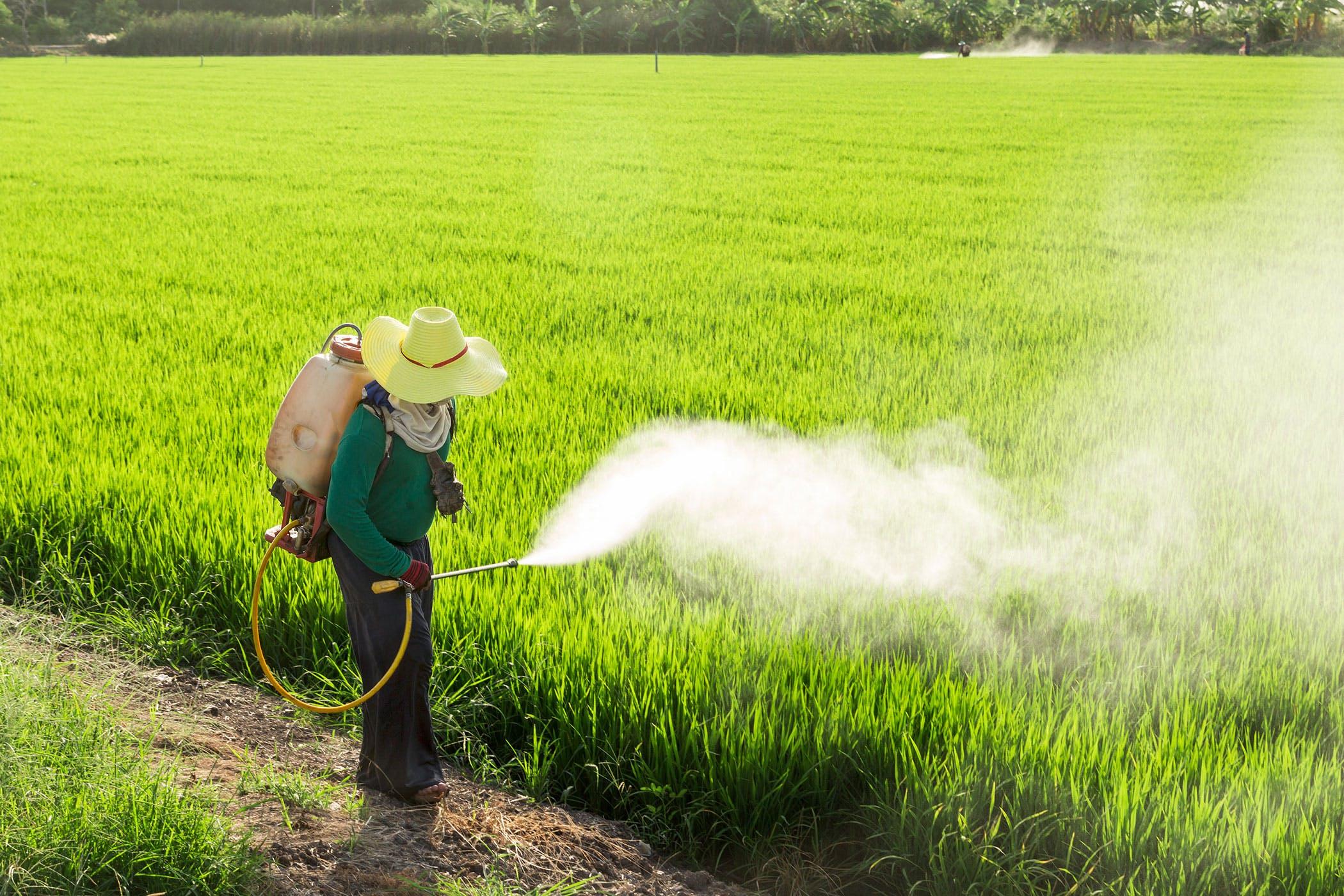 aplicação de pesticida atrazina