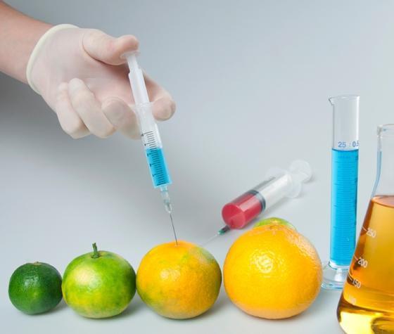 biotecnologia na produção de alimentos engenharia 360