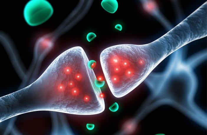 sinapse engenharia 360