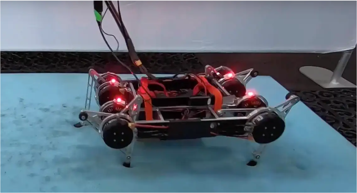 robô rainbow dash