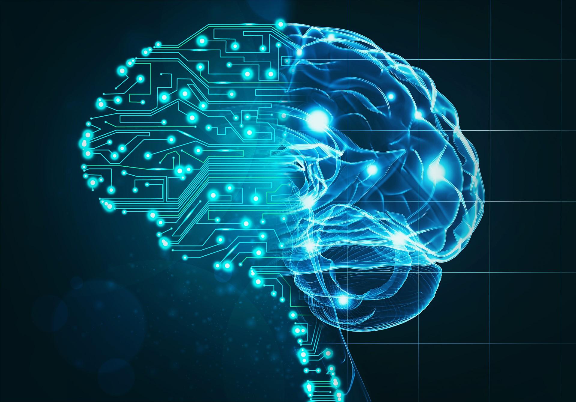 metade cérebro normal e metade computacional
