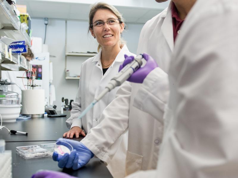 pesquisadores dos modelos de tumores em laboratório vestindo jaleco