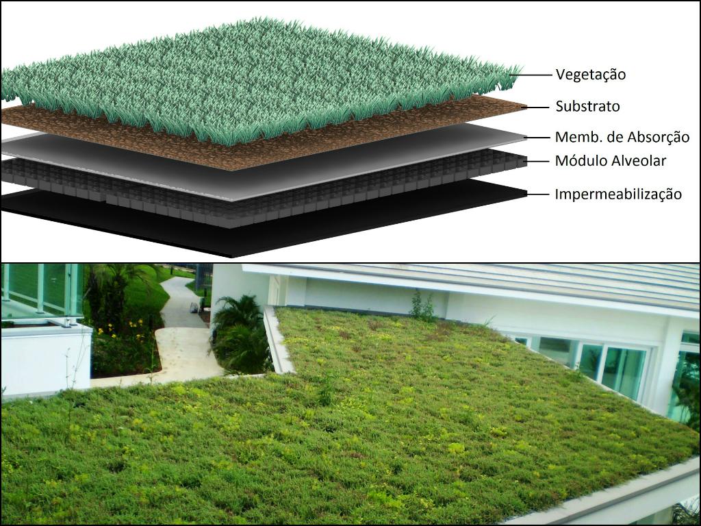 Telhado verde e exemplo de sua composição