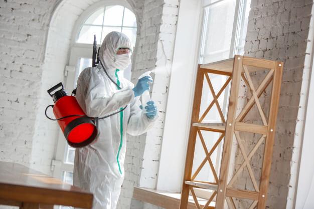 Sanitização mulher borrifando spray em superfície