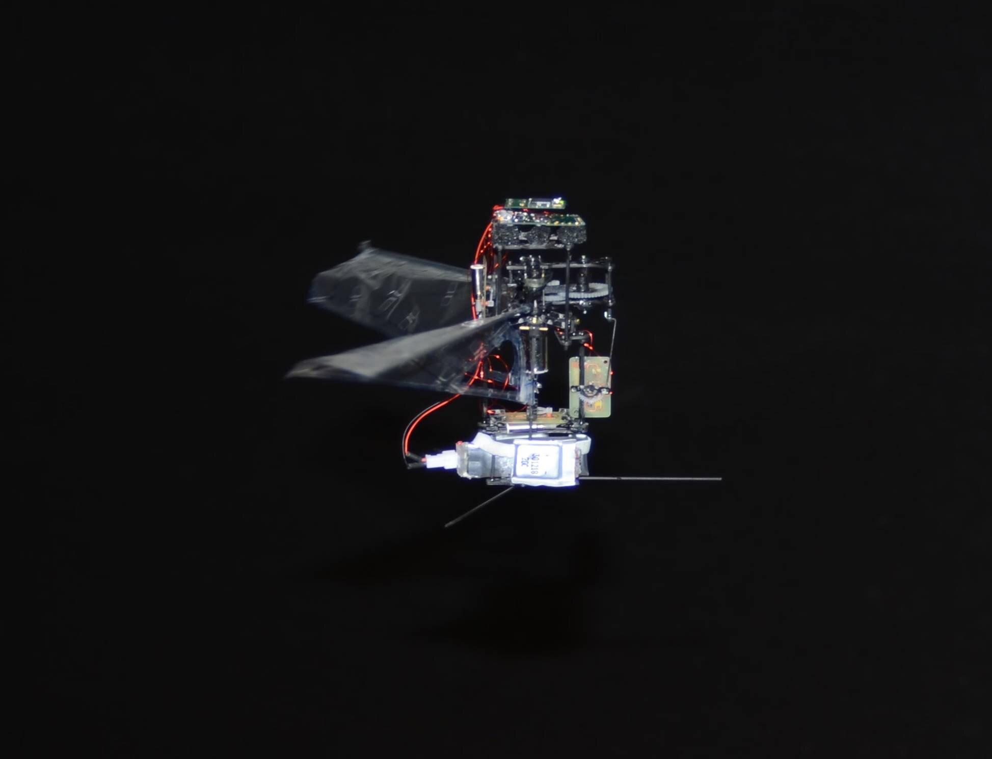 """KUBeetle-S: robô inspirado em um besouro faz um """"buzz"""" no ramo da robótica"""