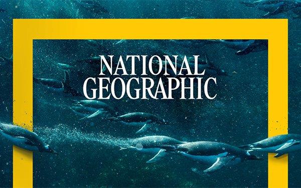 National Geographic lança plataforma Aprenda em Casa