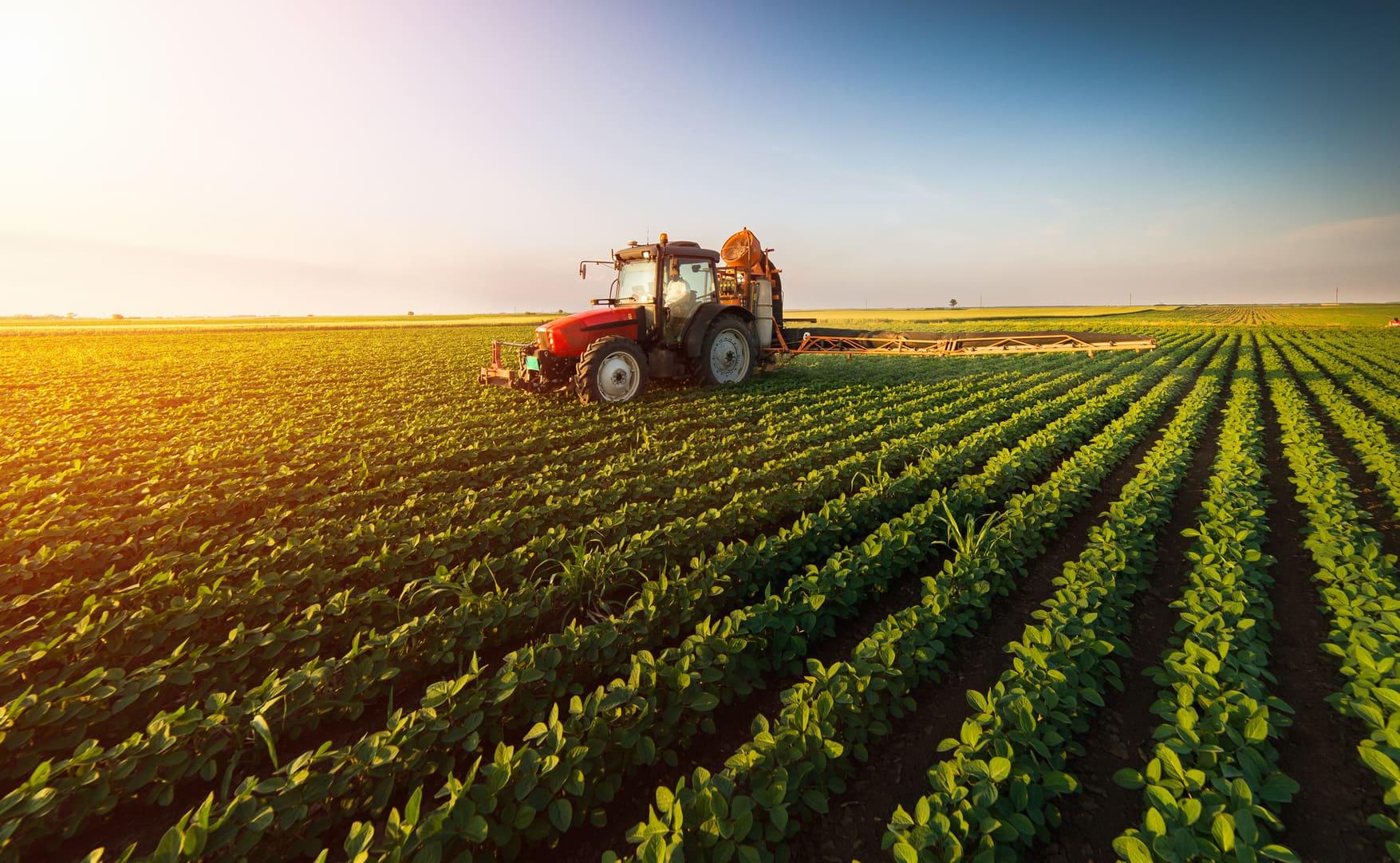 Como o engenheiro de produção pode atuar no agronegócio?
