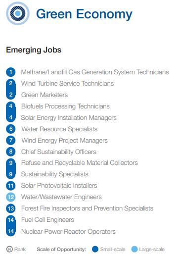 Ranking de trabalhos emergentes para a área de economia verde. Fonte: McKinsey & Company