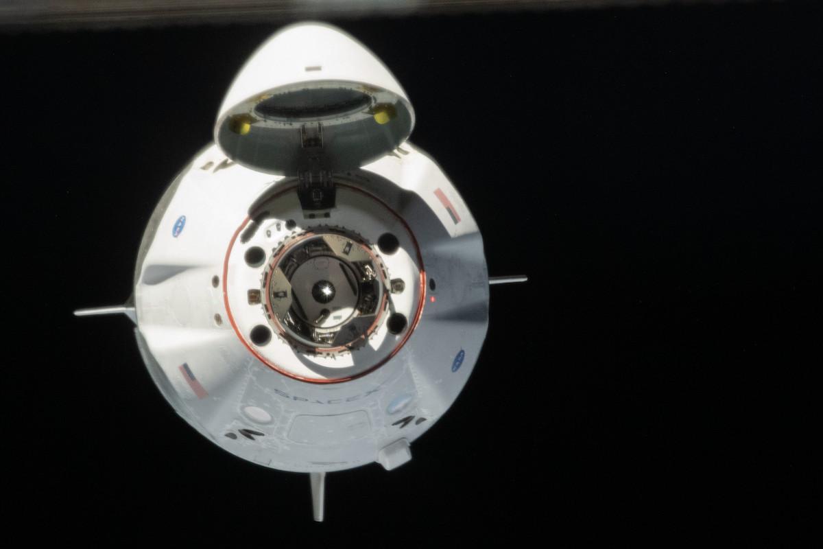 Crew-1: SpaceX vai enviar quatro astronautas para o espaço
