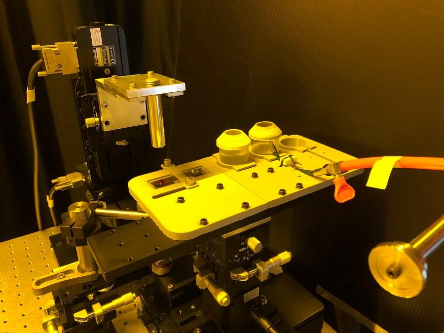 estrutura criada para imprimir microestruturas coloridas em 3D