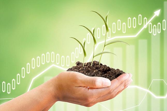 imagem de mão segurado planta representando engenharia verde