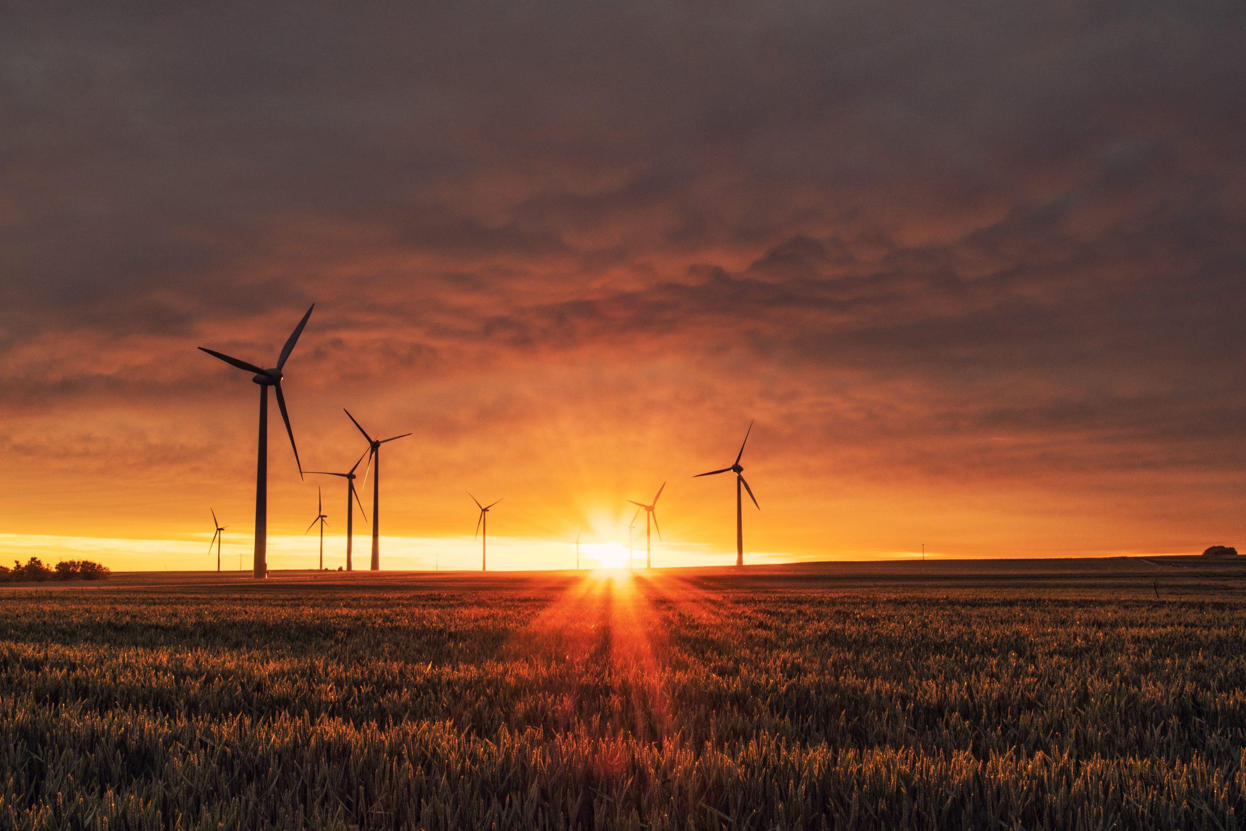 imagem de turbinas de energia eolica representando bateria da tesla