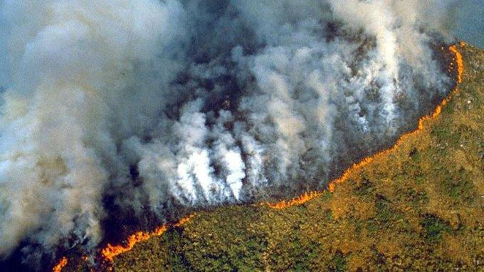 queimadas destruindo amazônia