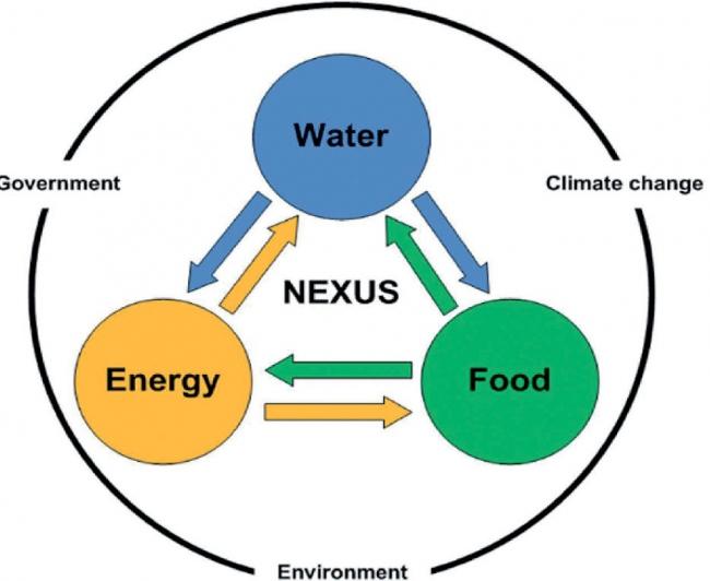 diagrama ilustrando as relações entre água, energia e alimento
