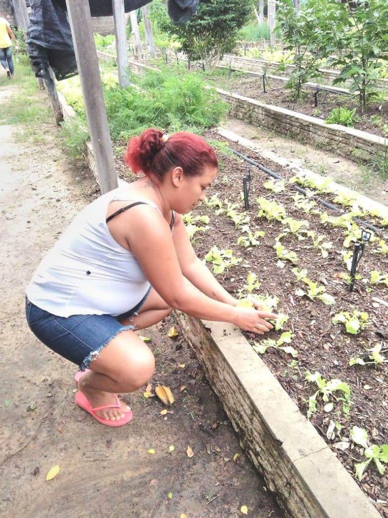 mulher agachada cultivando horta urbana