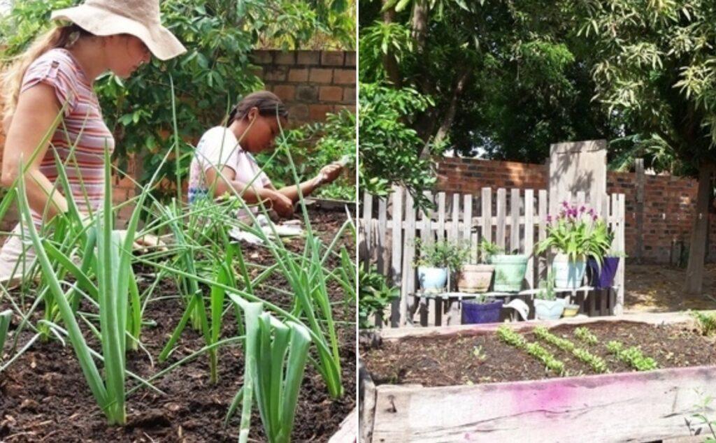 mulheres cultivando hortas urbanas