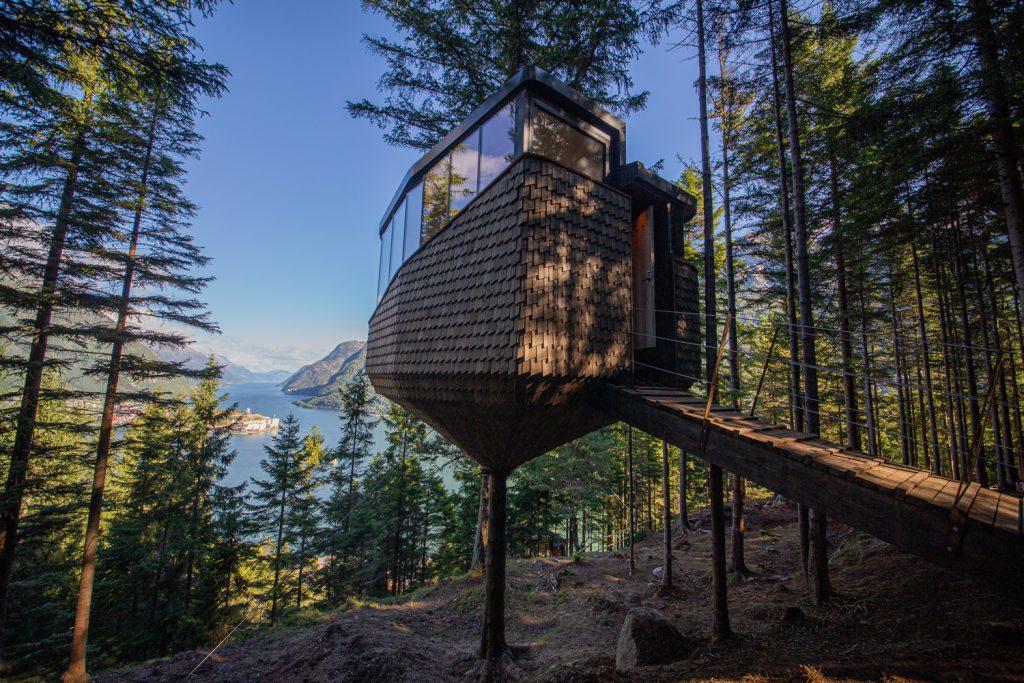 cabine na árvore