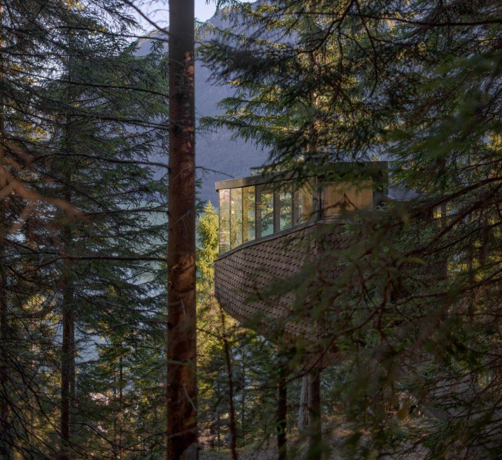 cabine de casa na árvore