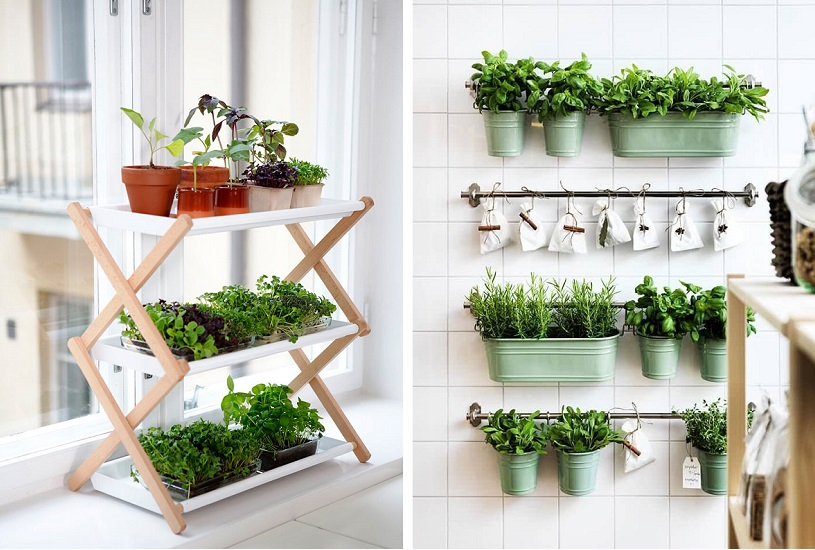 como ter horta em apartamento