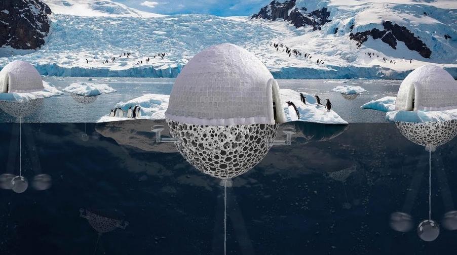 iglu criado para sistema de reprodução dos pinguins