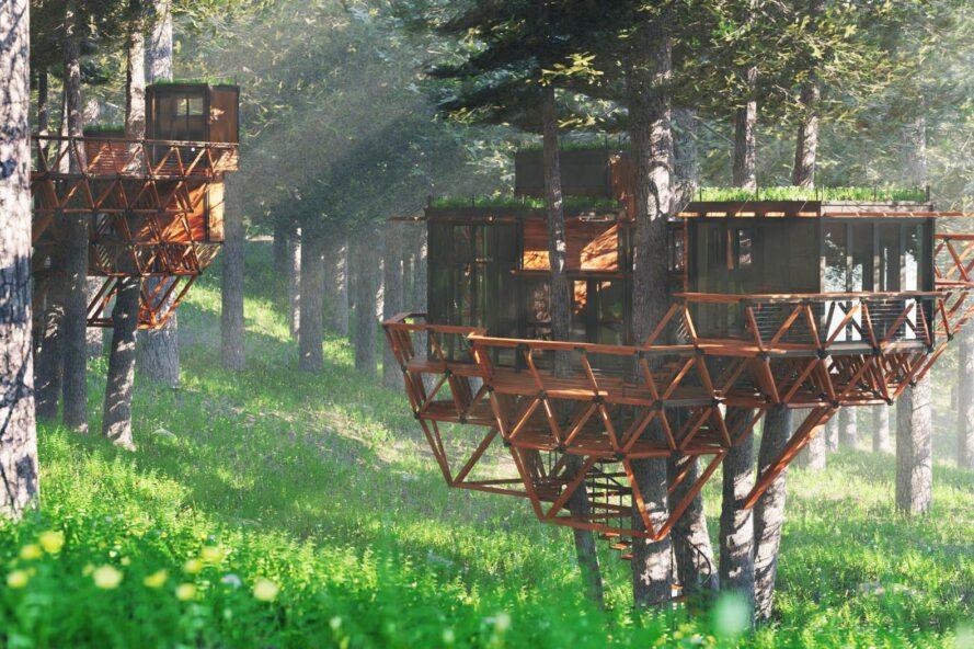 casa na árvore idealizada pelo projeto