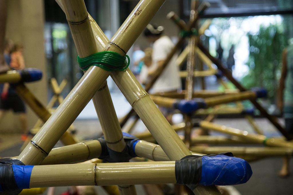 bambu, uma alternativa para construções ecológicas