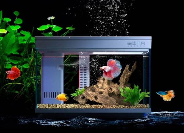 imagem da tecnologia xiomi aquarios, dentre as novas tecnologias para residências