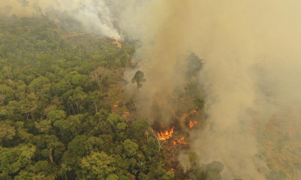 Desmatamento. © Michael Dantas / WWF-Brasil