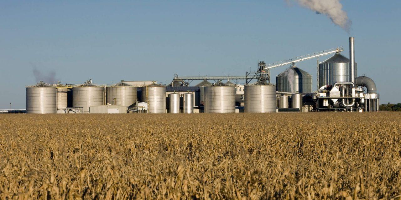 Combustíveis de biomassa dois