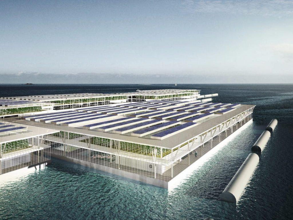 Smart Floating Farms  projeto de hortas urbanas