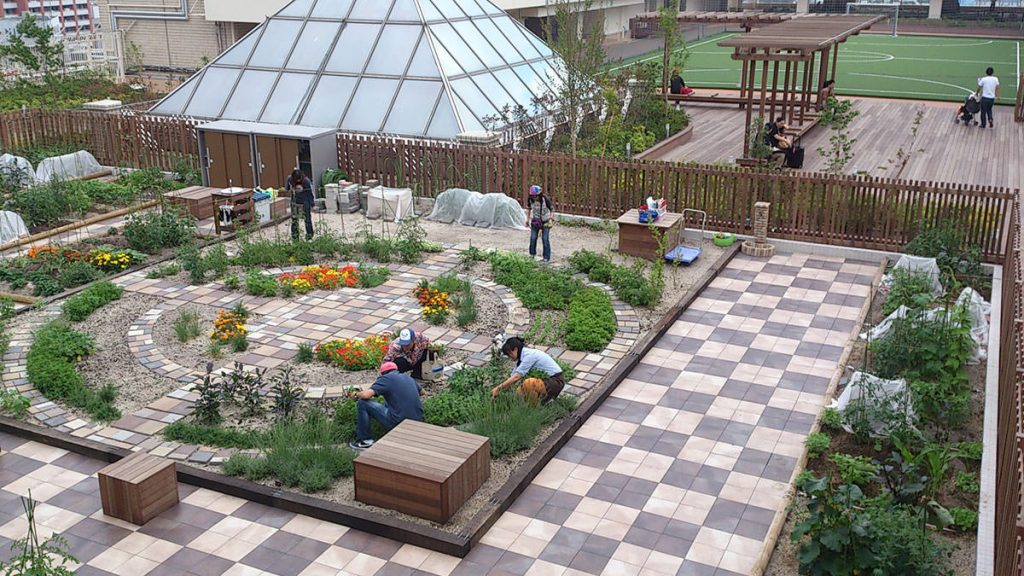 Sodaro Farm exemplo de hortas urbanas