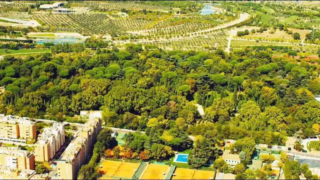 florestamento urbano