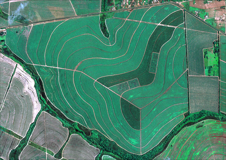 Imagem gerada por satélite de um campo agrícola - Startup fundada por brasileiro cria nanosatélite que promete soluções para a agricultura